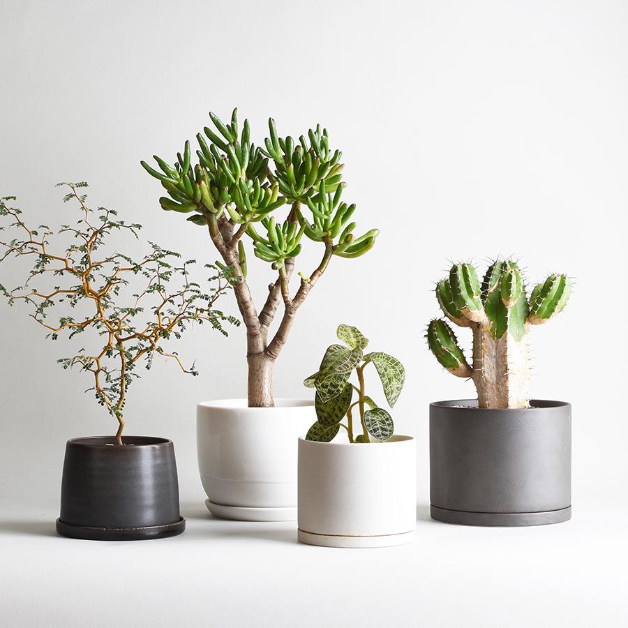 KINTO PLANT POT SECONDARY BANNER