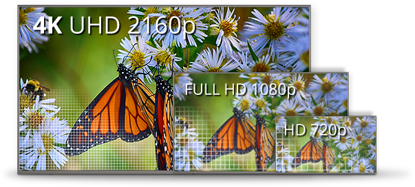 Elevate Your Viewing Experience  With Beautiful 4k UHD