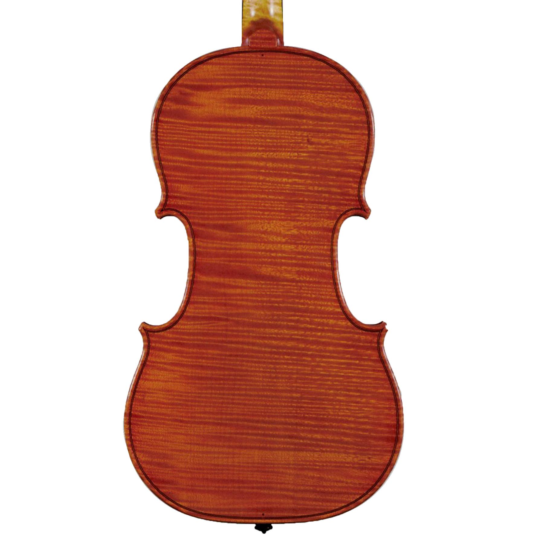 Guido Trotta Violin 2016 in action
