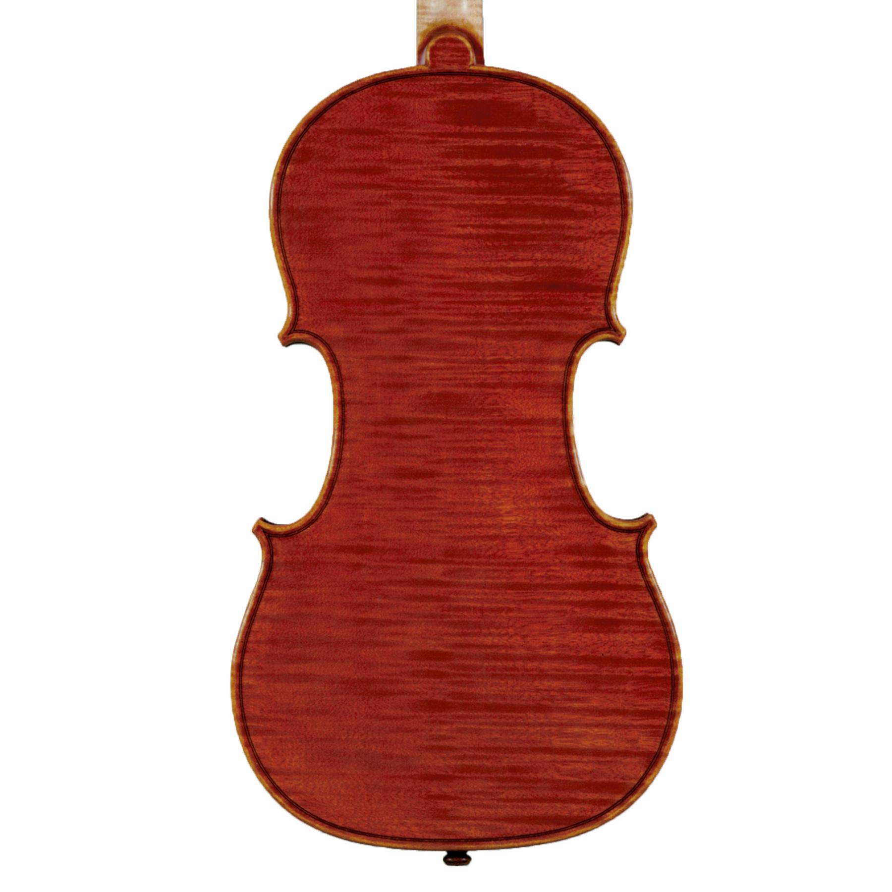 Daniele Scolari Violin 2016 in action