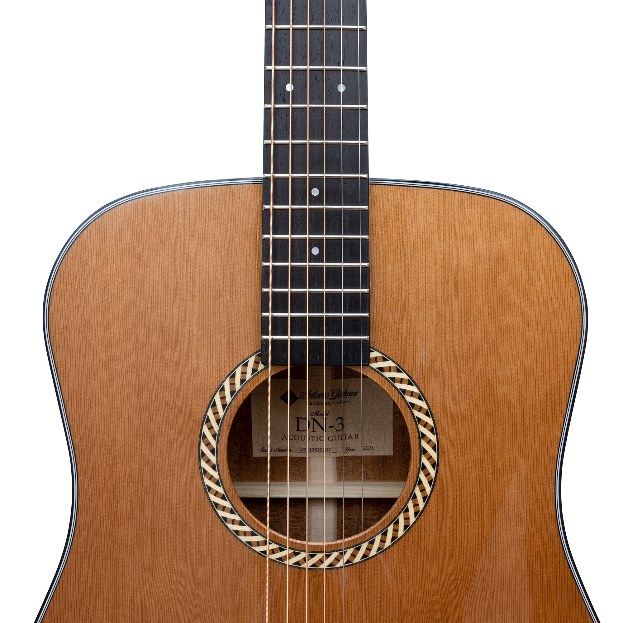 Antonio Giuliani DN-3 Steel-String Dreadnought Acoustic Guitar Outfit in action