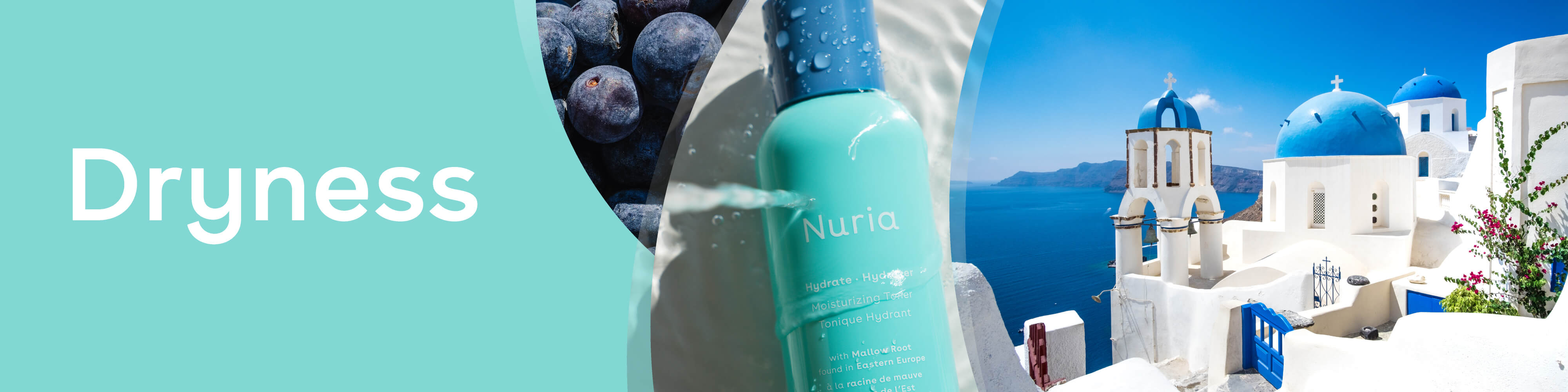 Dryness - Nuria's products for your skin concerns