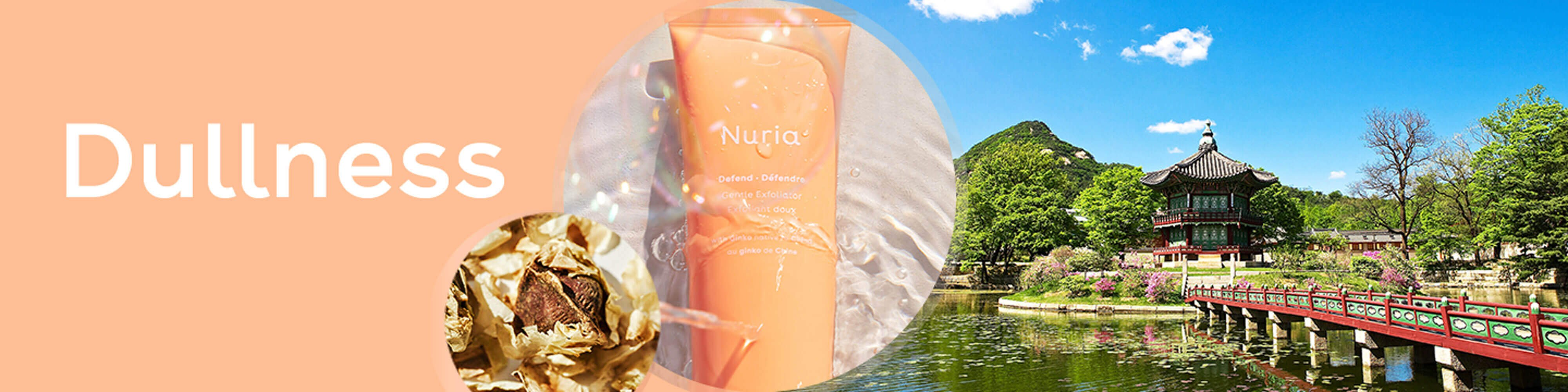 Dullness - Nuria's products for your skin concerns