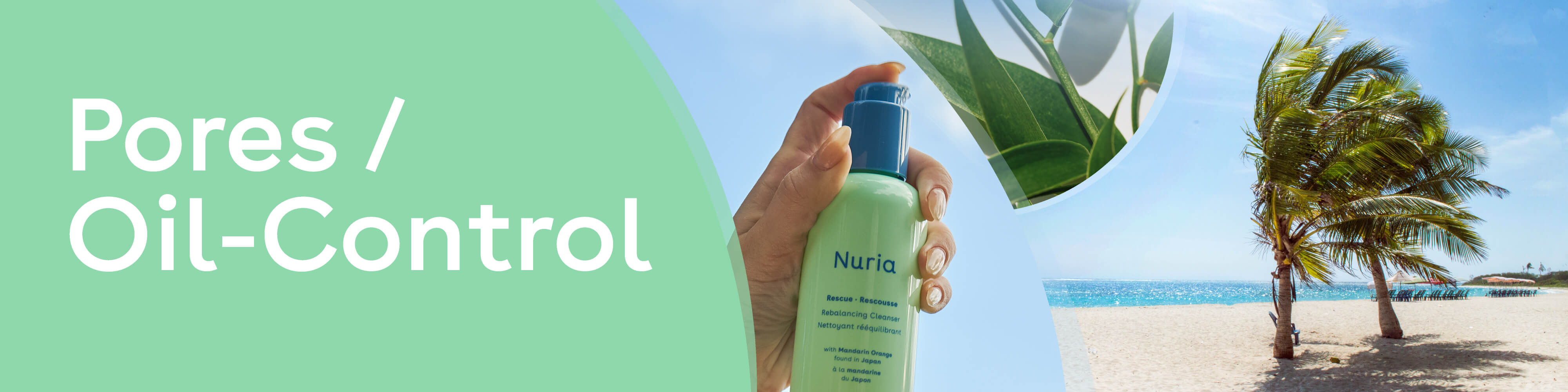 Pores / Oil Control - Nuria's products for your skin concerns