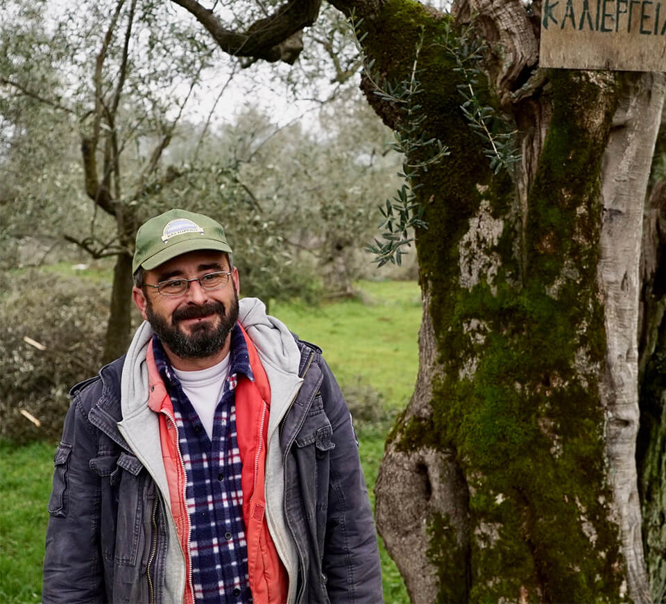 Artisan Standing Next to Olive Tree