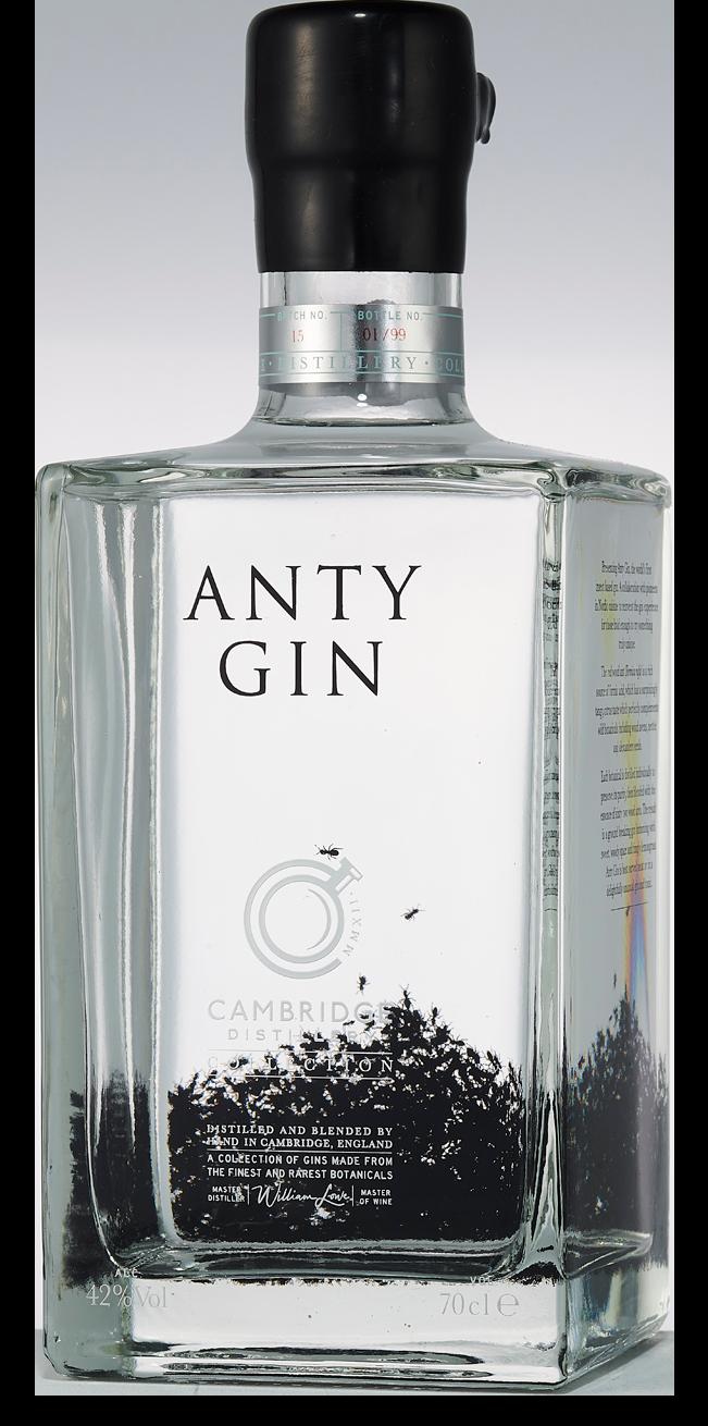 Anty Gin (Alumni)