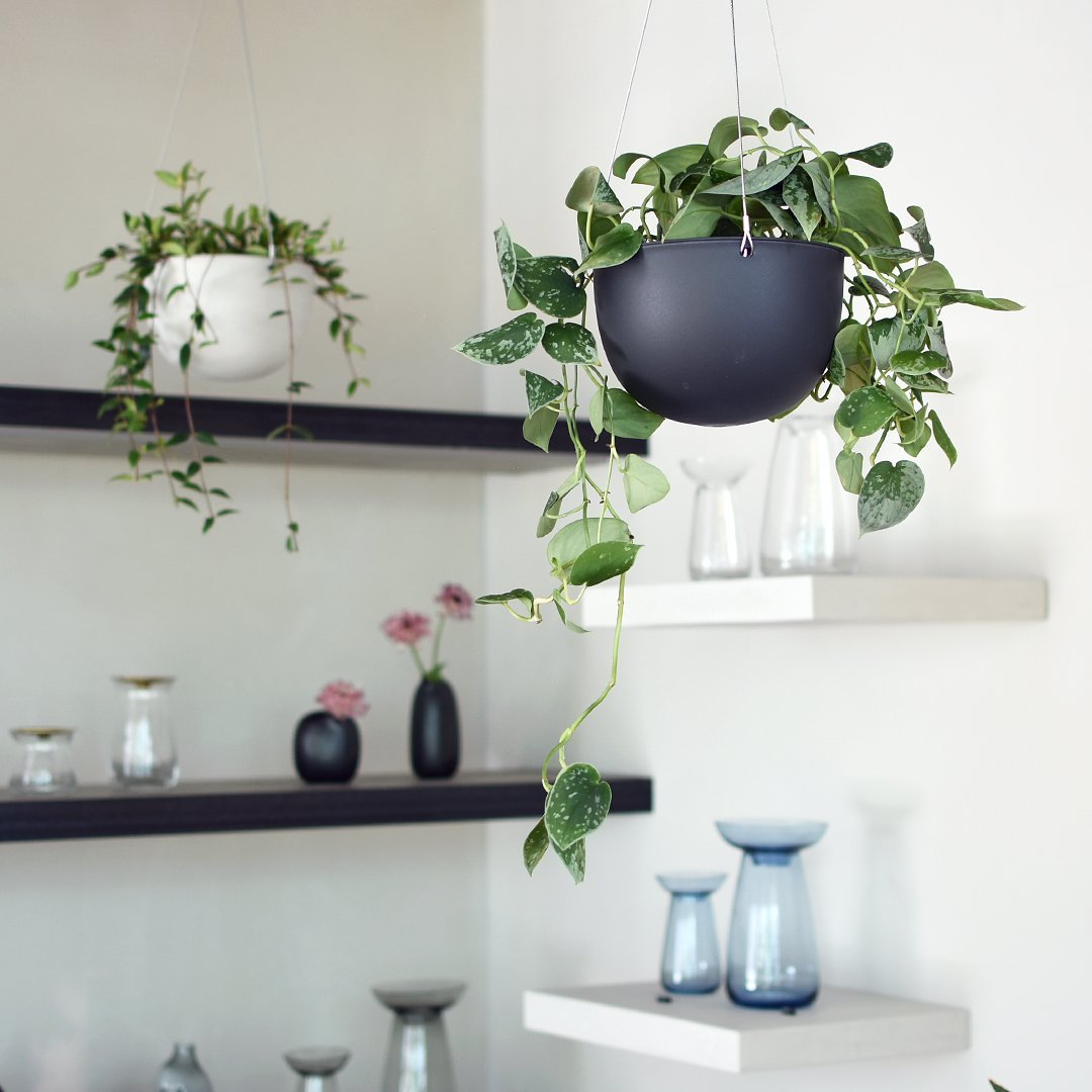 KINTO PLANT POT TERTIARY BANNER