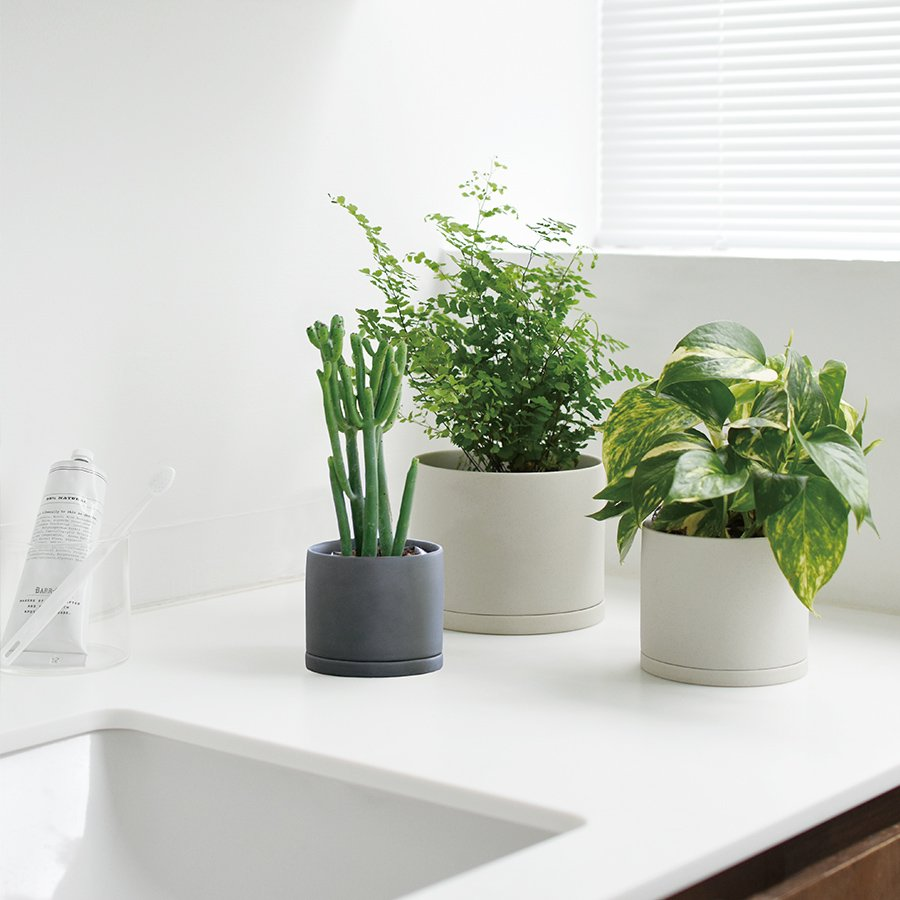 KINTO PLANT POT 191_ 85MM / 3IN  DARK GRAY