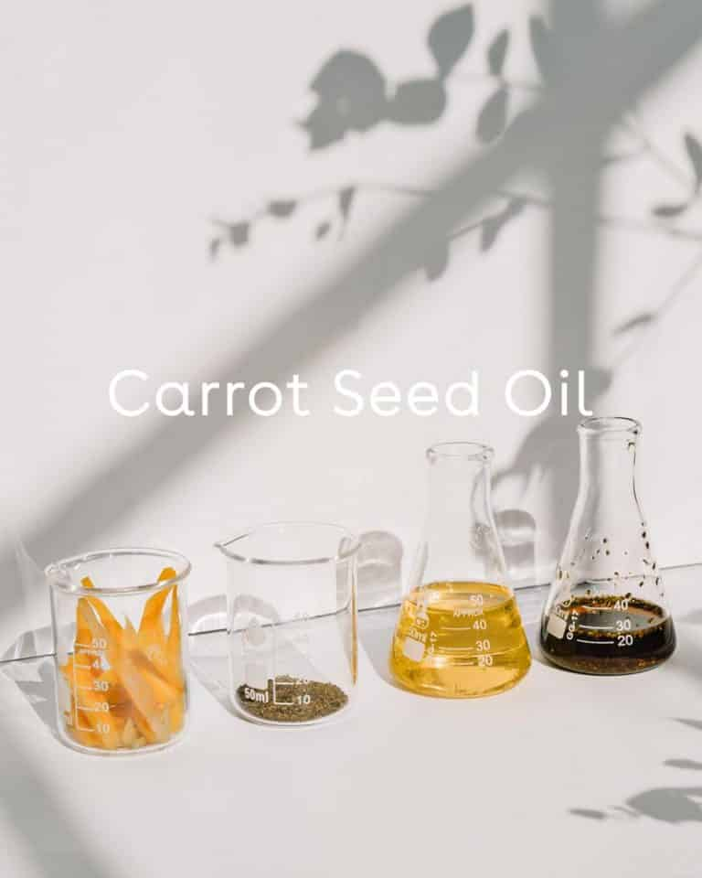 Defend Skin Restoring Serum with Carrot Seed Oi + Rooibos Red Tea + Sodium Hyaluronate