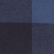 navy and slate check