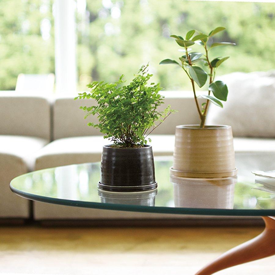 KINTO PLANT POT 192_ 110MM / 4IN BEIGE