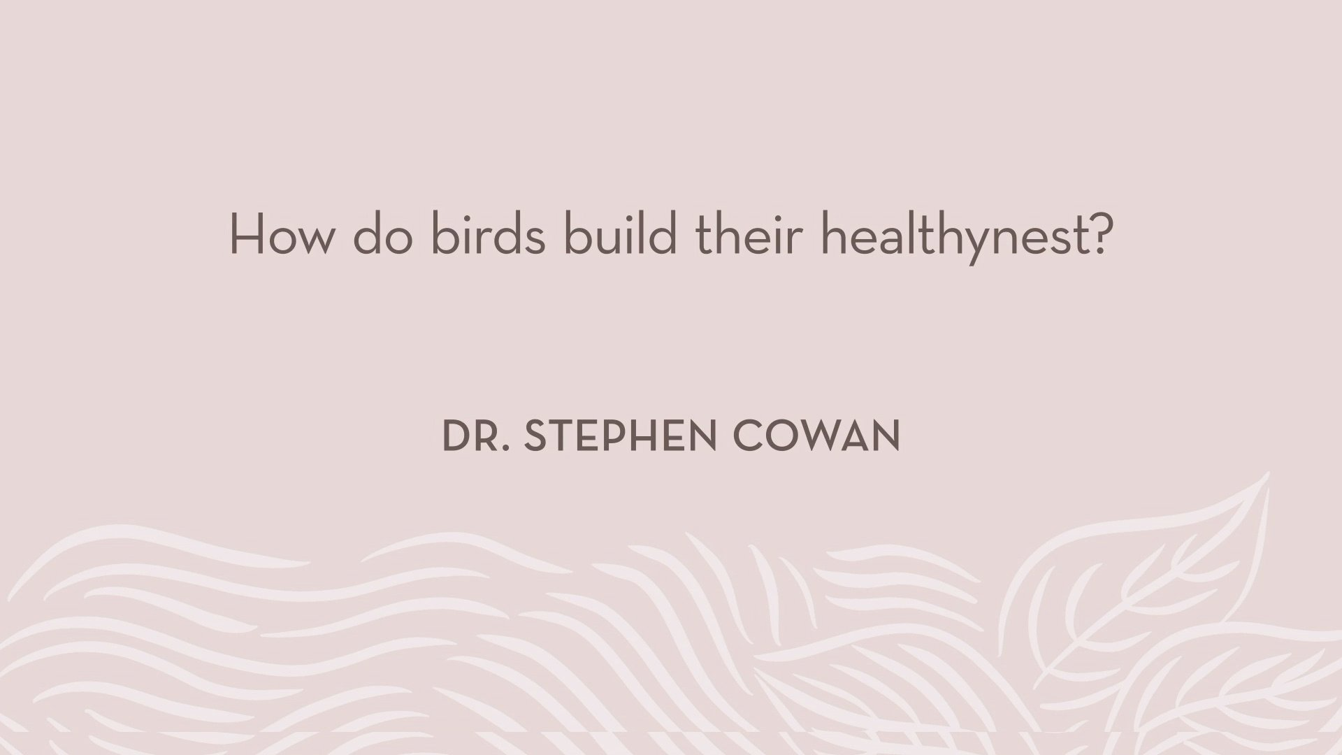 Dr. Cowan | How do birds build their healthynest?