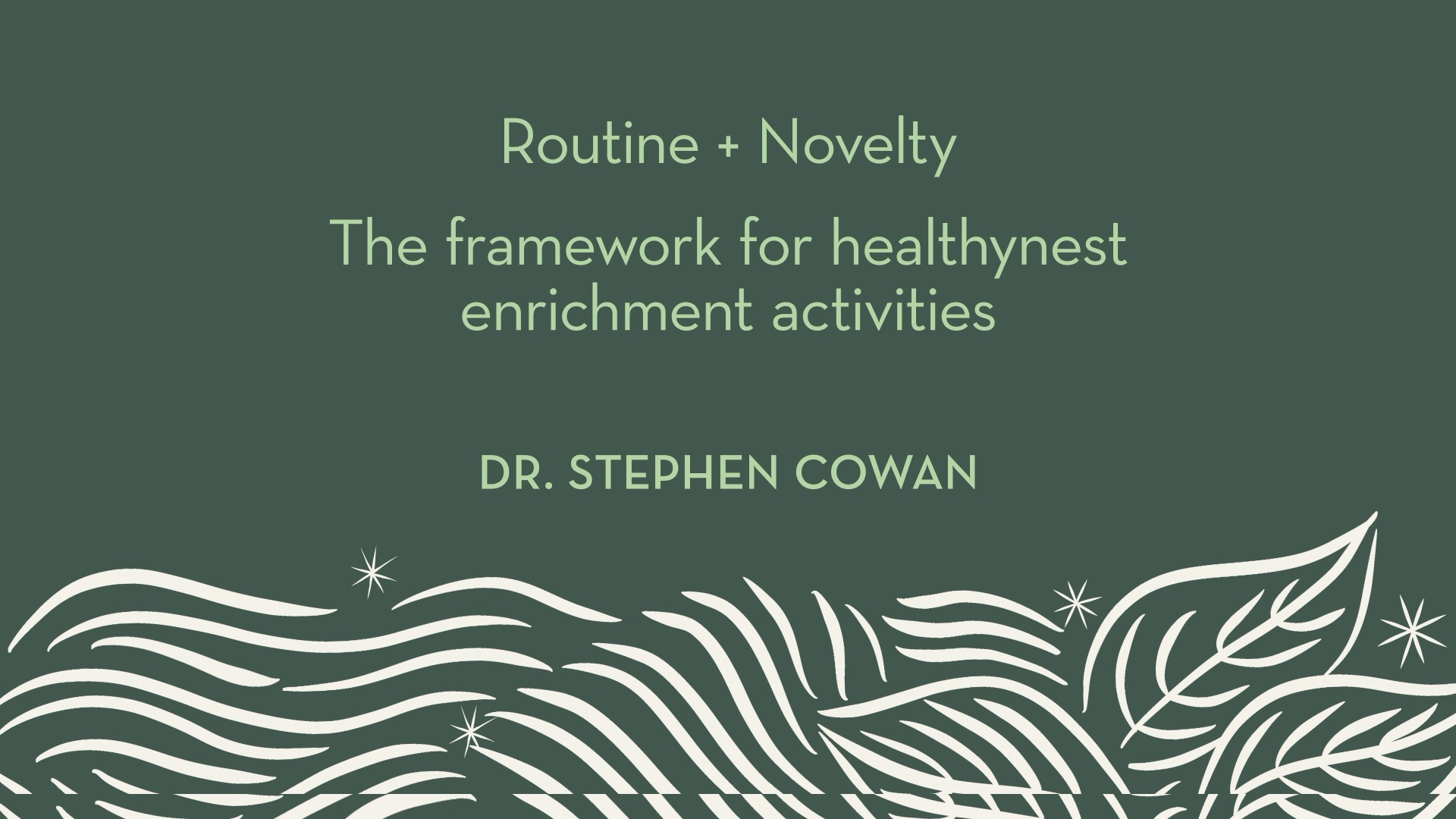 Dr. Cowan | Routine + Novelty - the framework for healthynest enrichment activities