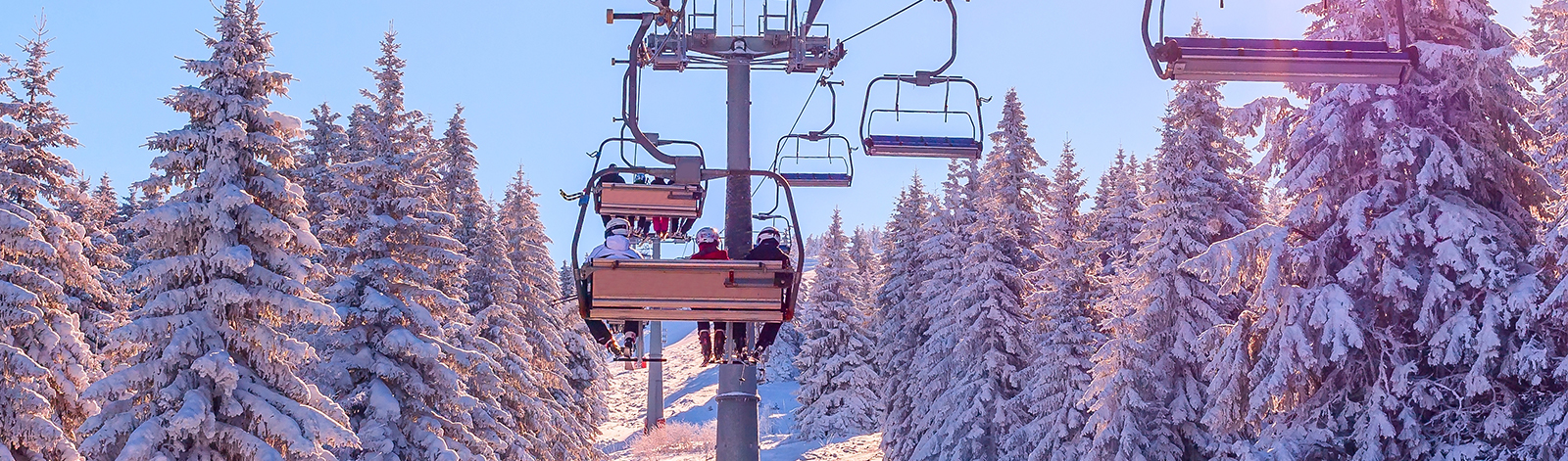 Skiers on a chairlift surrounded by white snow pine trees