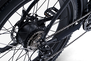 RadRover Electric Fat Bike Version 5key feature  5