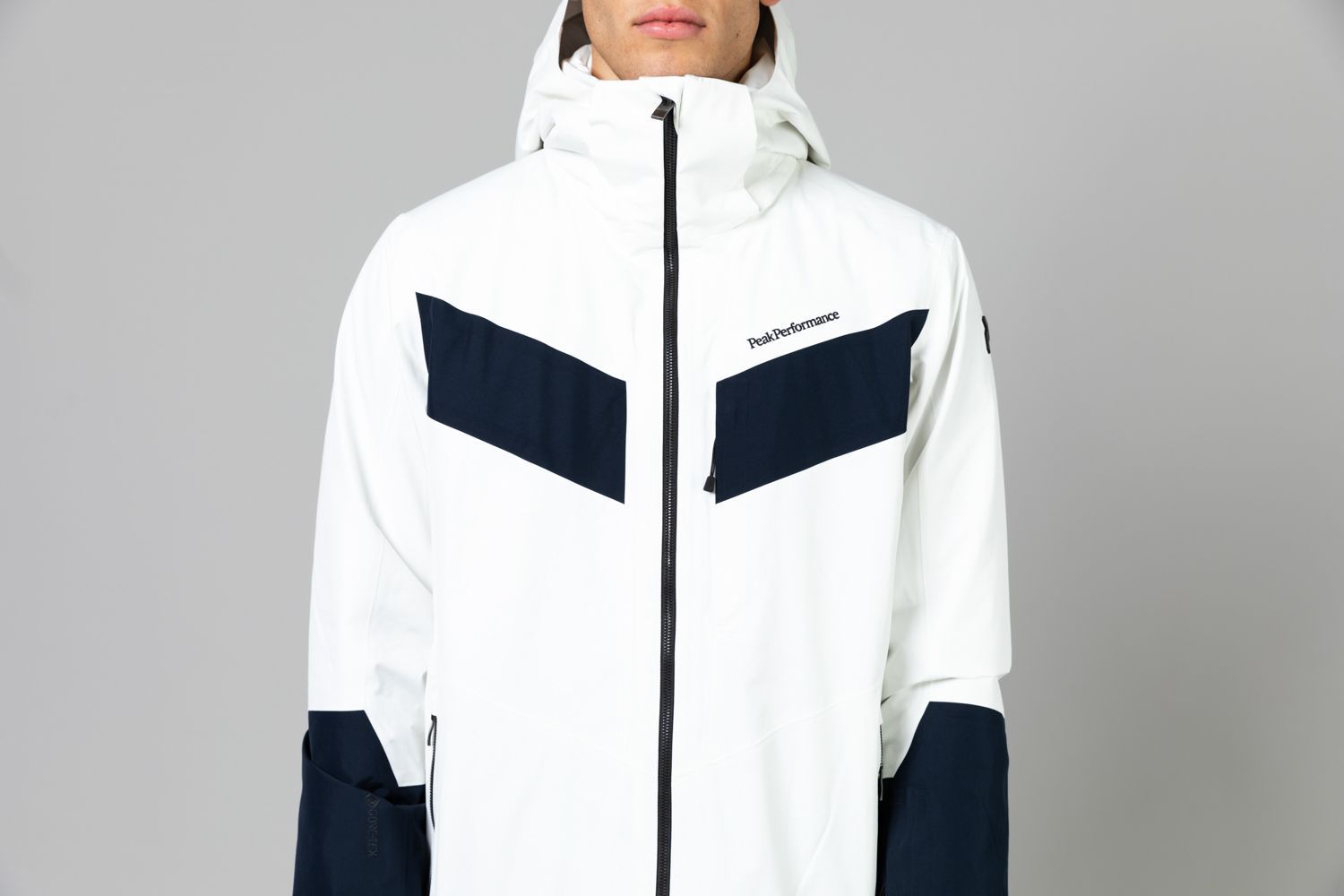 Men's Peakville Gore-Tex Ski Jacket Sale
