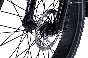 RadRover Electric Fat Bike Version 5key feature 8