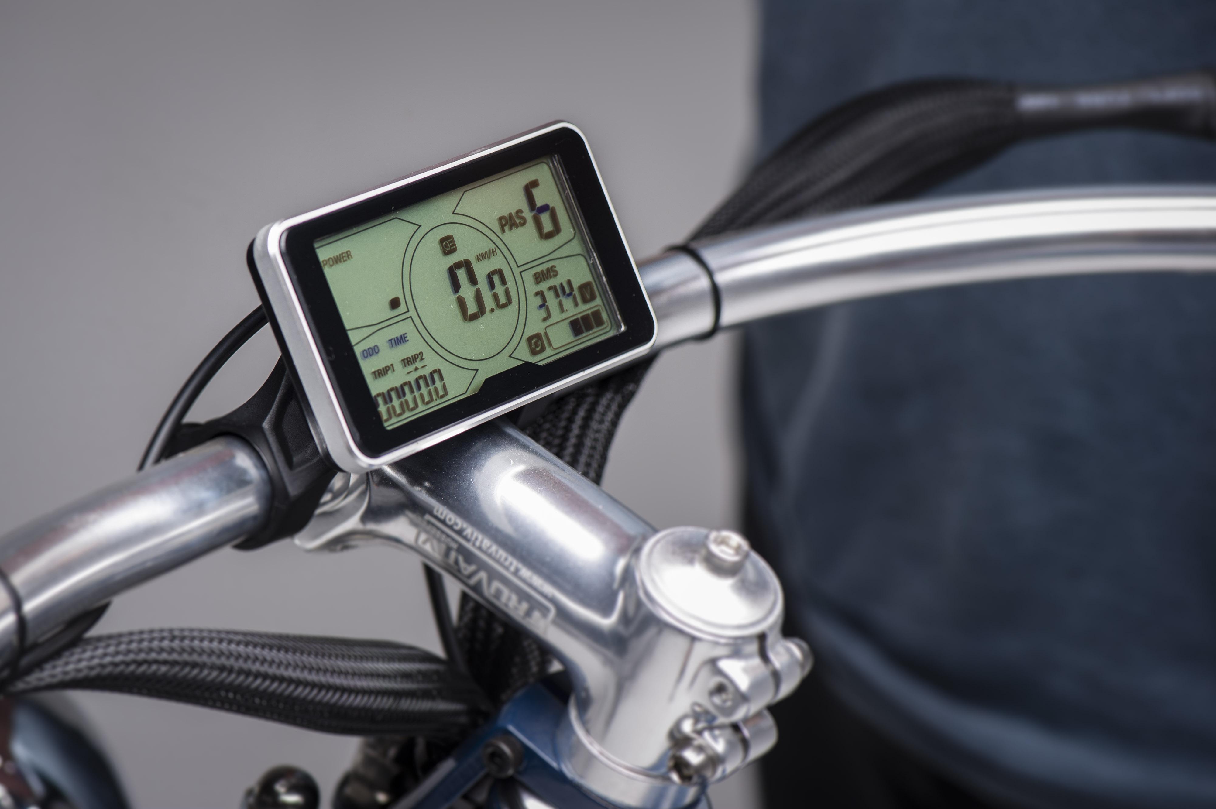 Vallkree The Spirit Horse Belt Drive 250 e-Bike