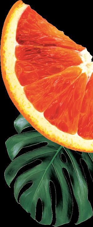 GO BIG ingredients blood orange
