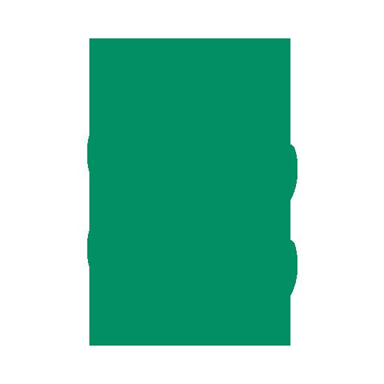 Moringa Icon | Kinship