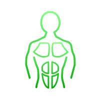 Assess left/right strength symmetry