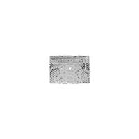 PORTE-CARTES LANA - PYTHON NATURAL SILVER