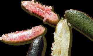 caviar-limes