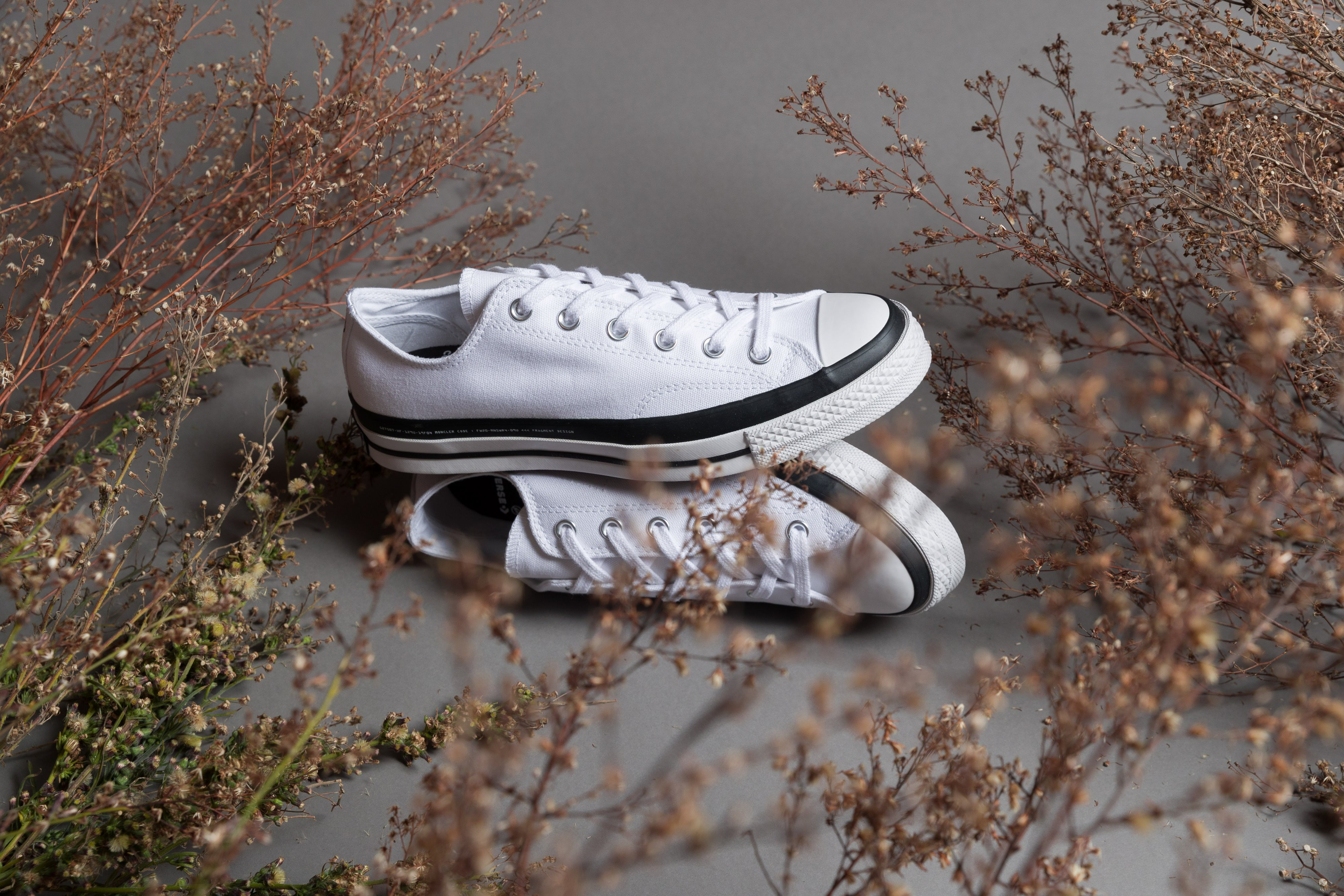 Converse - CT 70 x Fragment x Moncler - White - Up There
