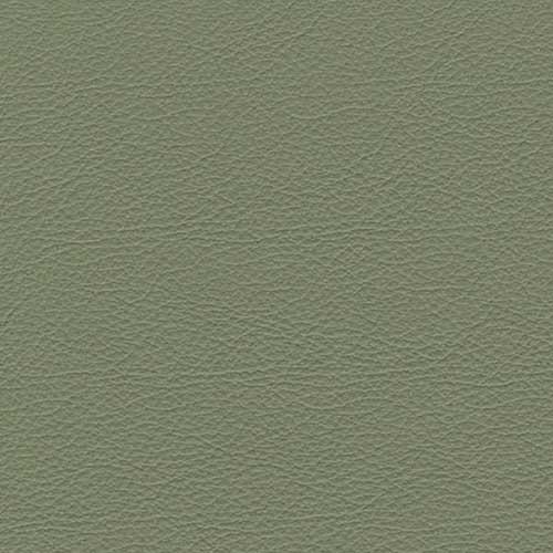 Primary - BA45 Olive