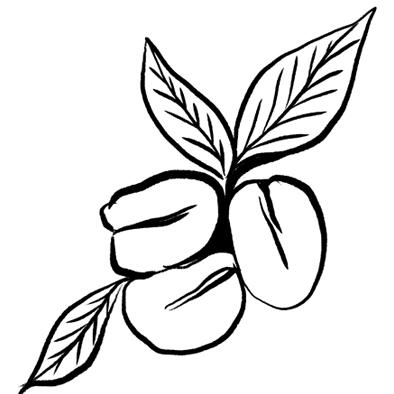 ENHANCED GREEN COFFEE BEAN EXTRACT