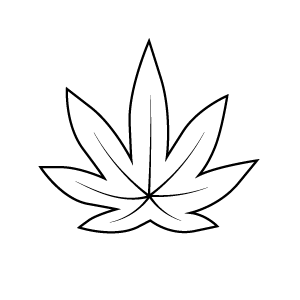 25mg CBD
