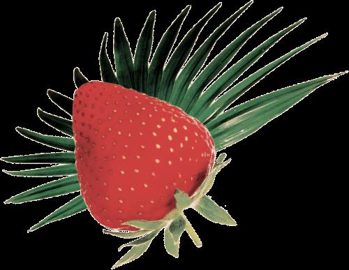 GO BIG ingredients strawberry