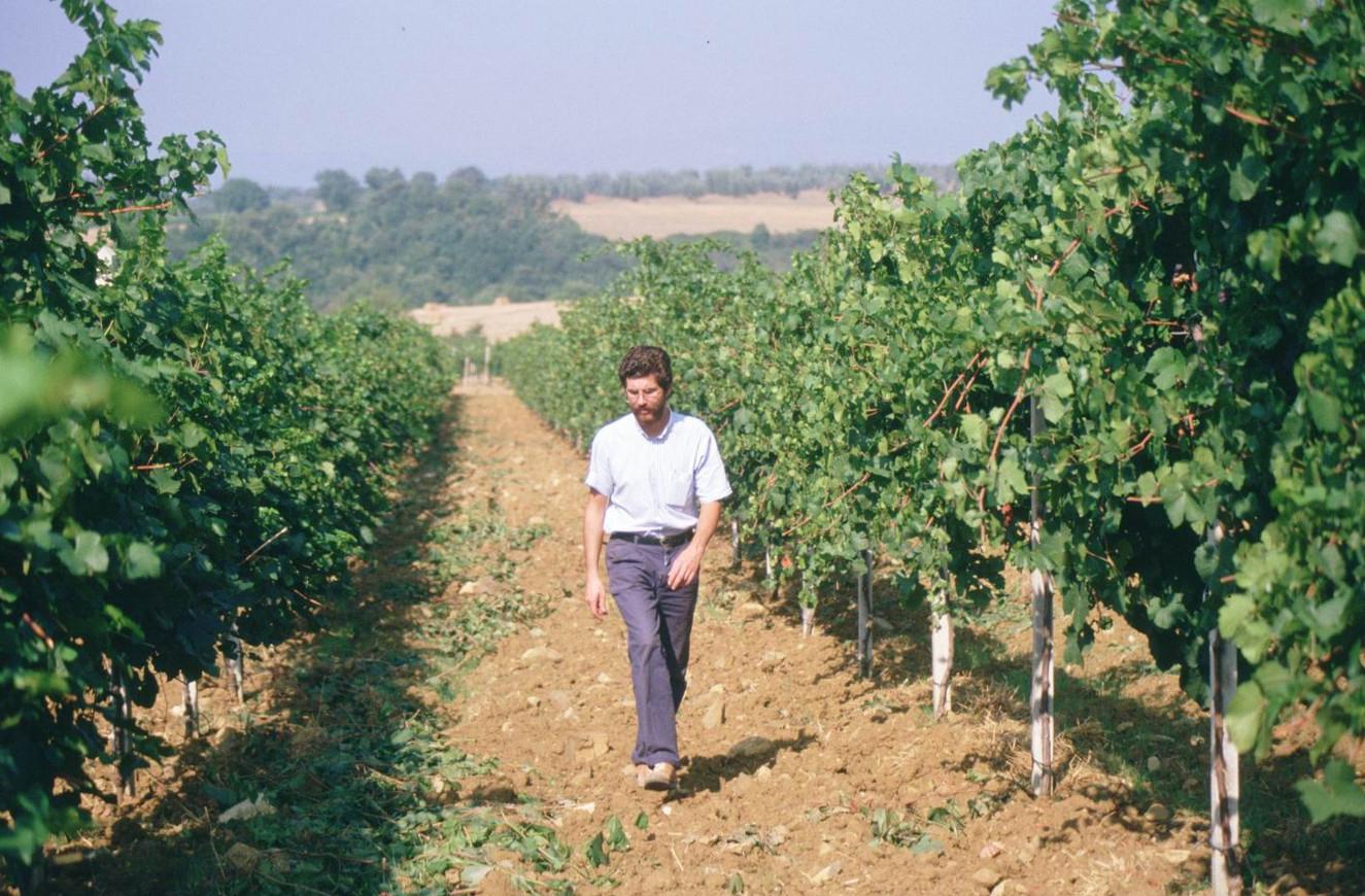 Pablo Ferrero Walking the Vineyard, 1983.