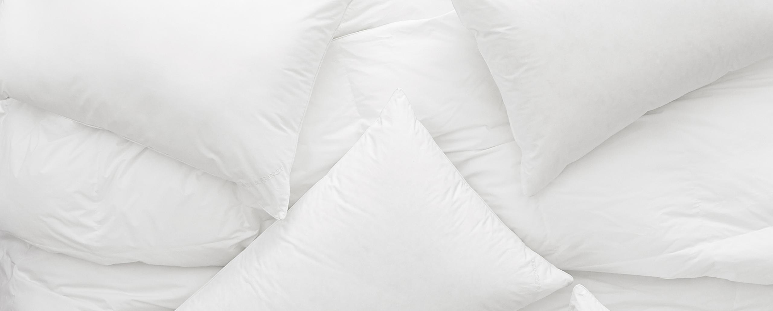Pillows & Duvet Inserts