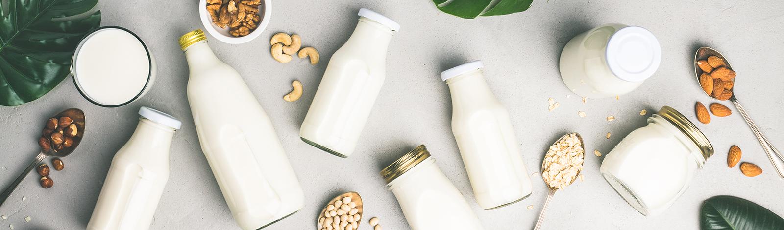 Dairy free milk alternatives and ingredients