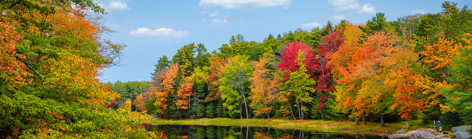 Colorful fall foliage tree reflections in calm pond water