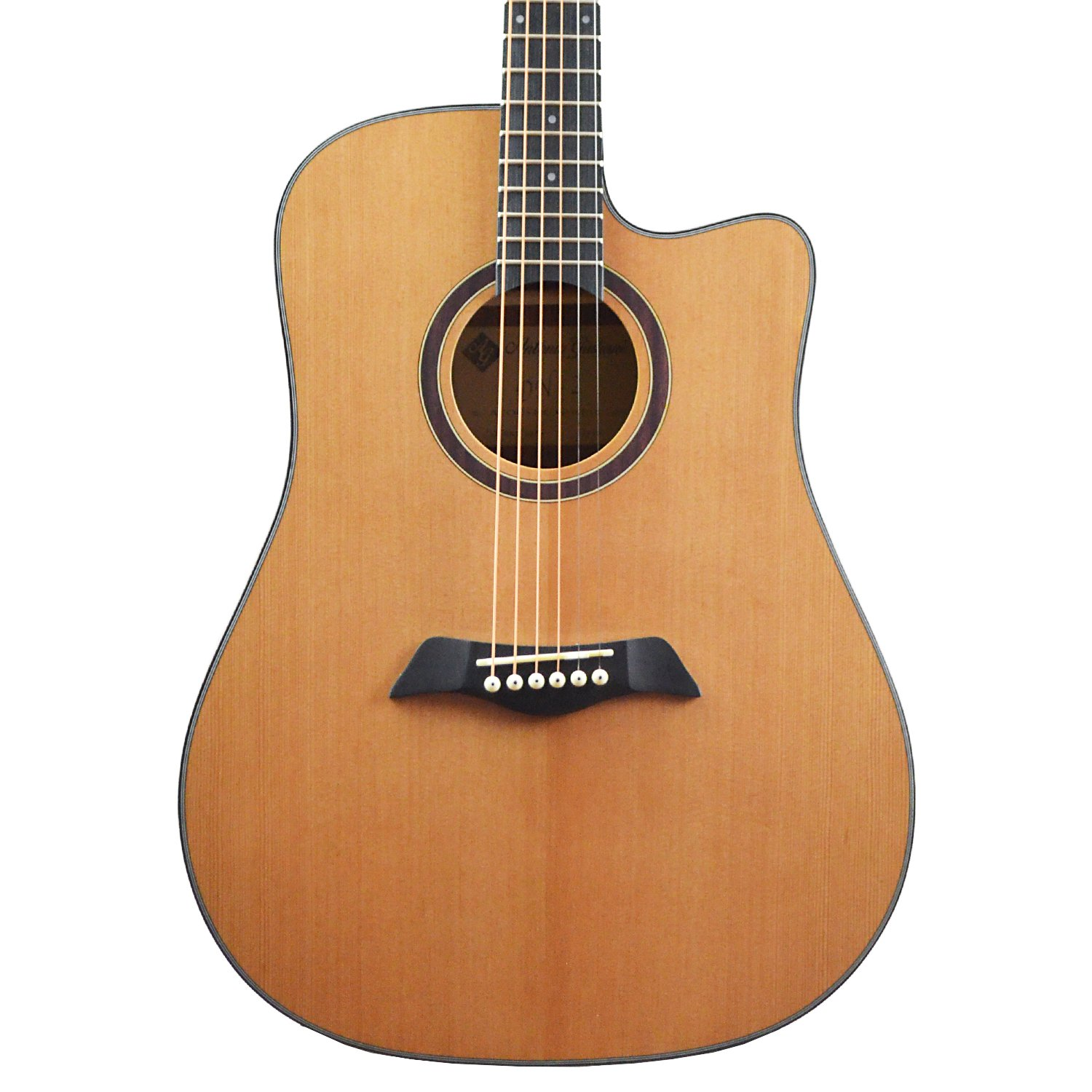 CLEARANCE Antonio Giuliani DN-2 Dreadnought Cutaway Acoustic Guitar Outfit in action