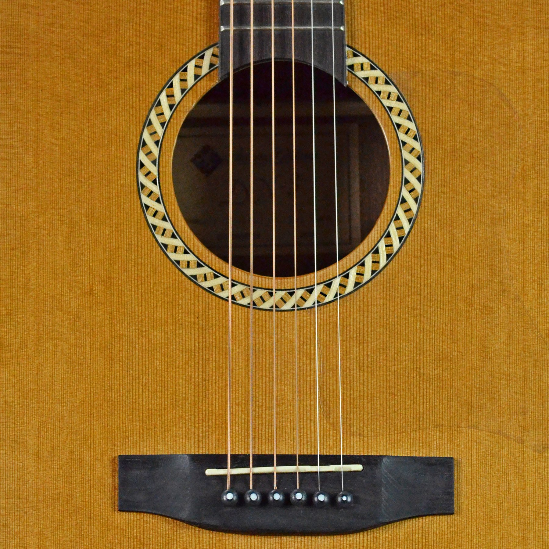 CLEARANCE Antonio Giuliani DN-3 Steel-String Dreadnought Acoustic Guitar Outfit in action