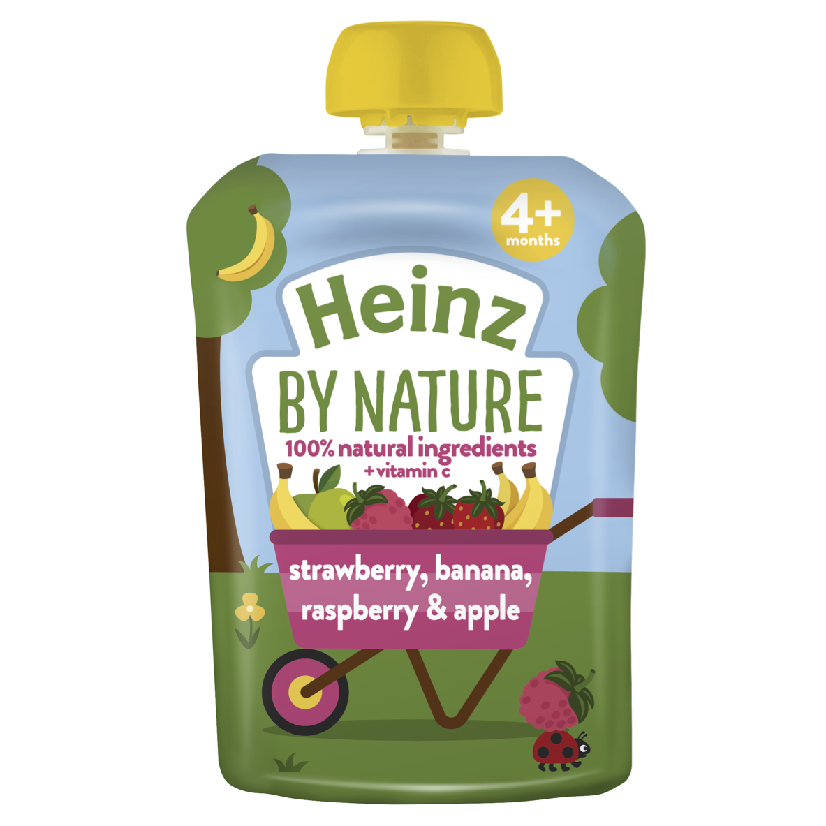 Photograph of 6x Heinz Strawberry Raspberry & Banana Fruit Pouch 100g product