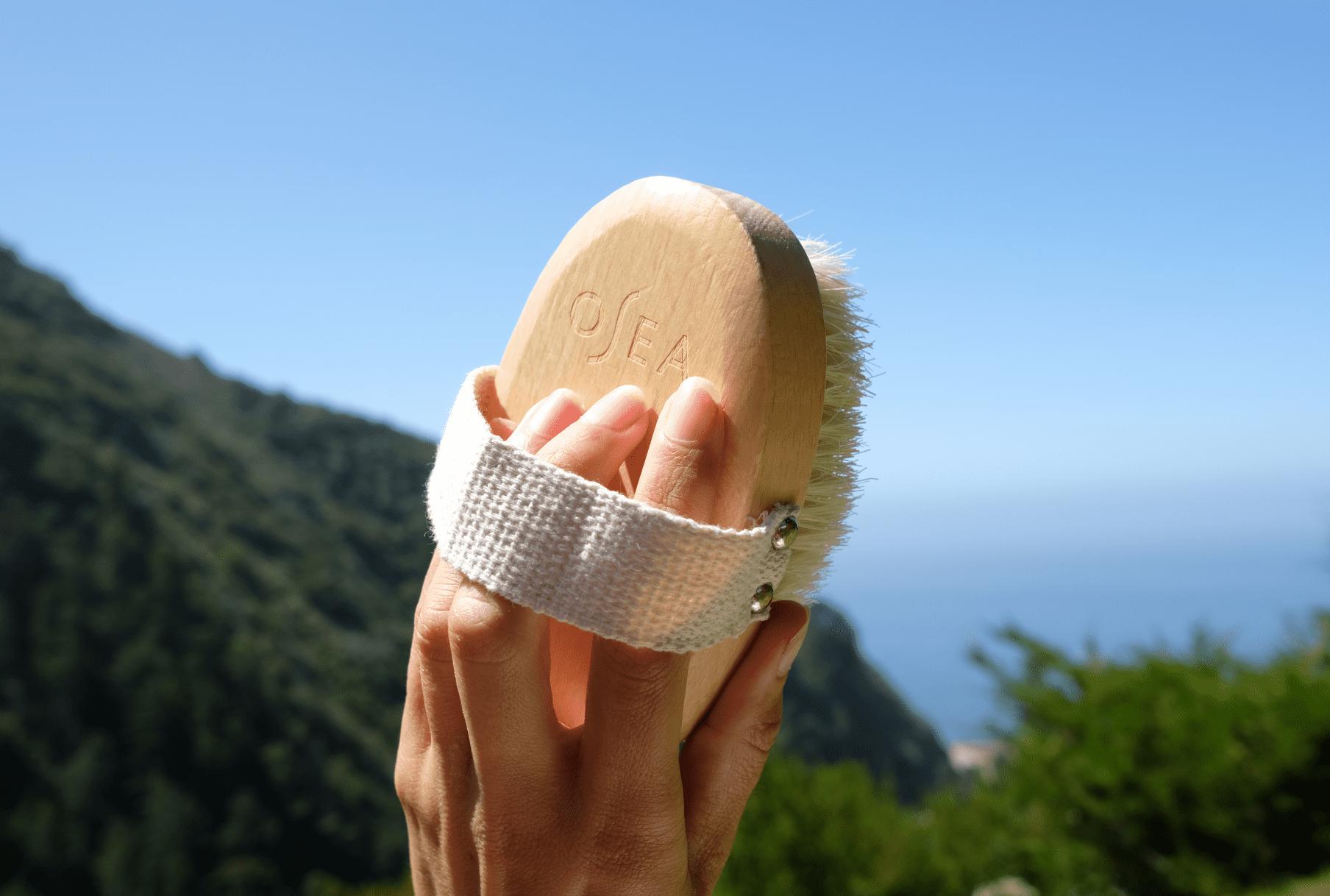 Plant-Based Dry Brush