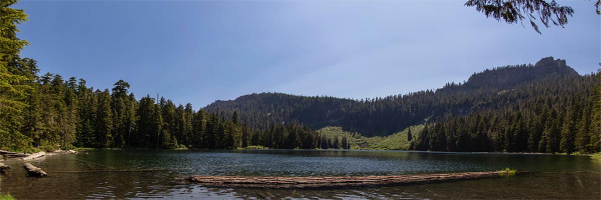 Cora Lake