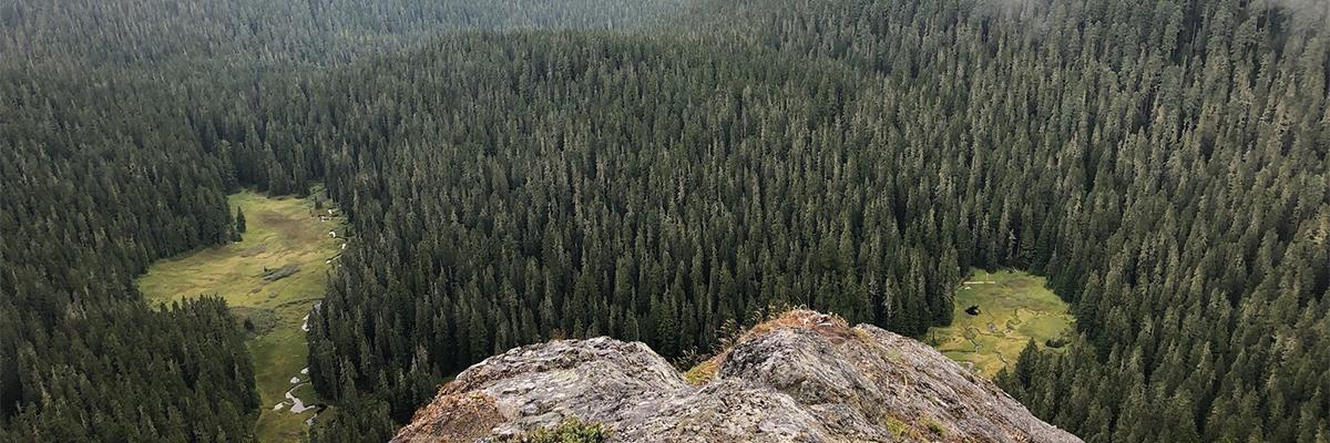 Mount Beljica