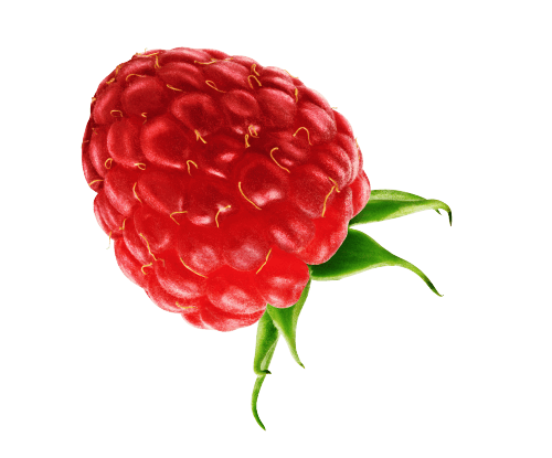 GO BIG ingredients raspberry