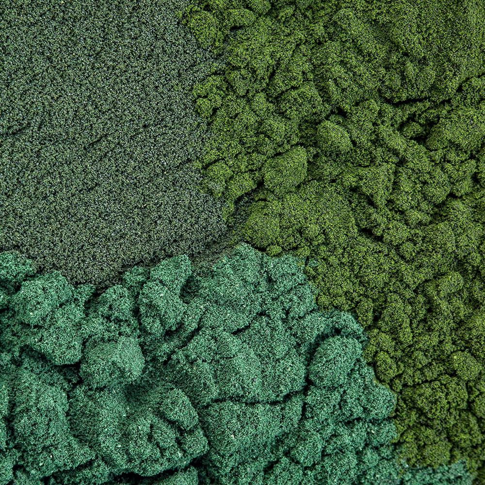 Leafy greens & sea greens blend