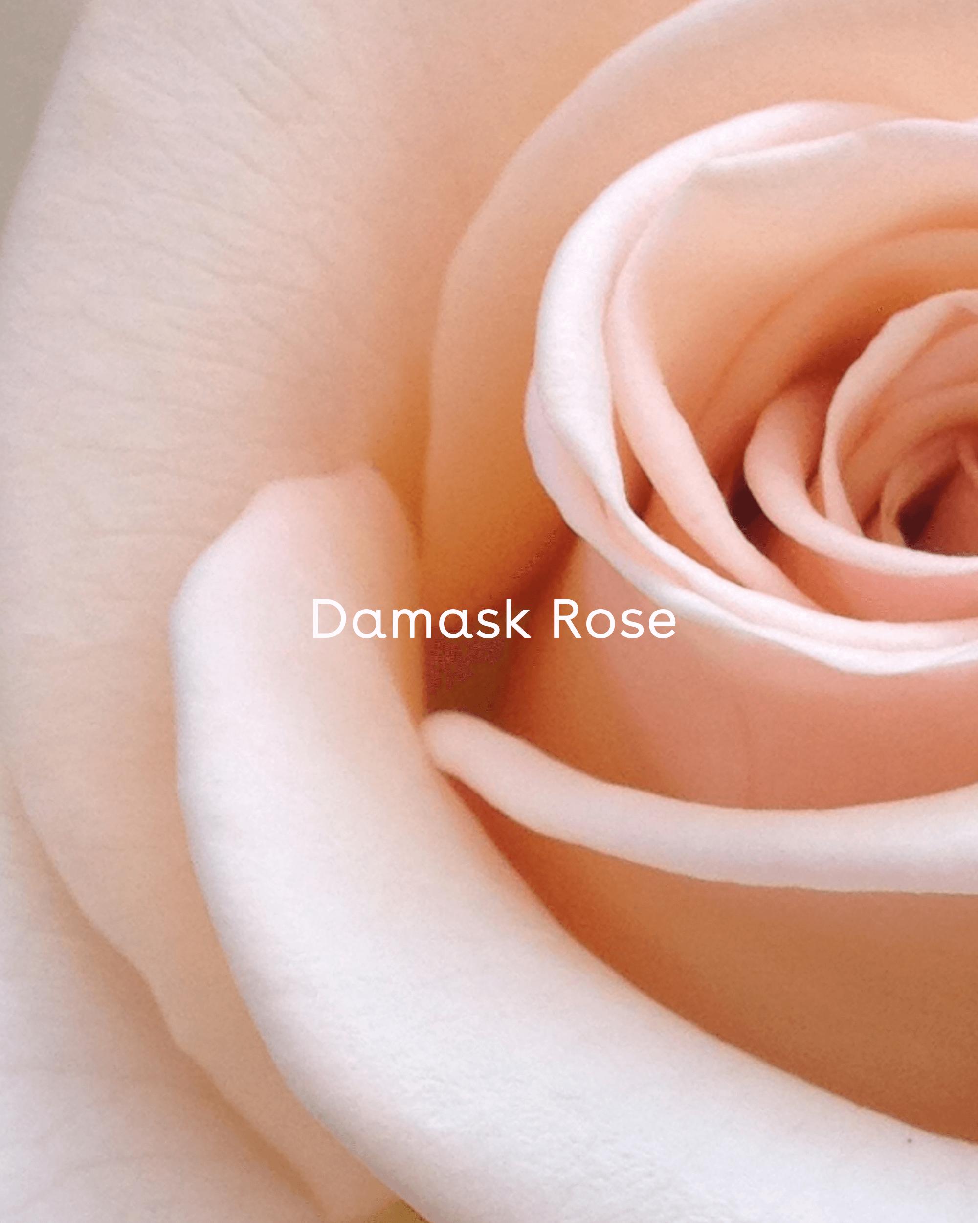 Rose Water Face Mist Spray