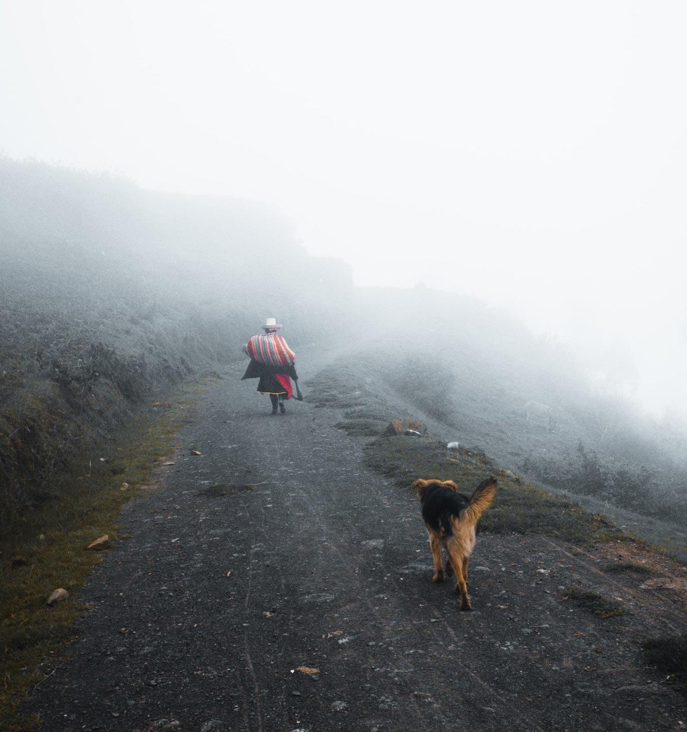 Bosques Verdes - Cajamarca, Peru