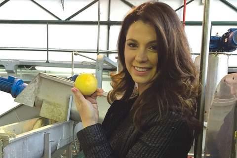 Citrus Bergamot: The Youth-Boosting Fruit