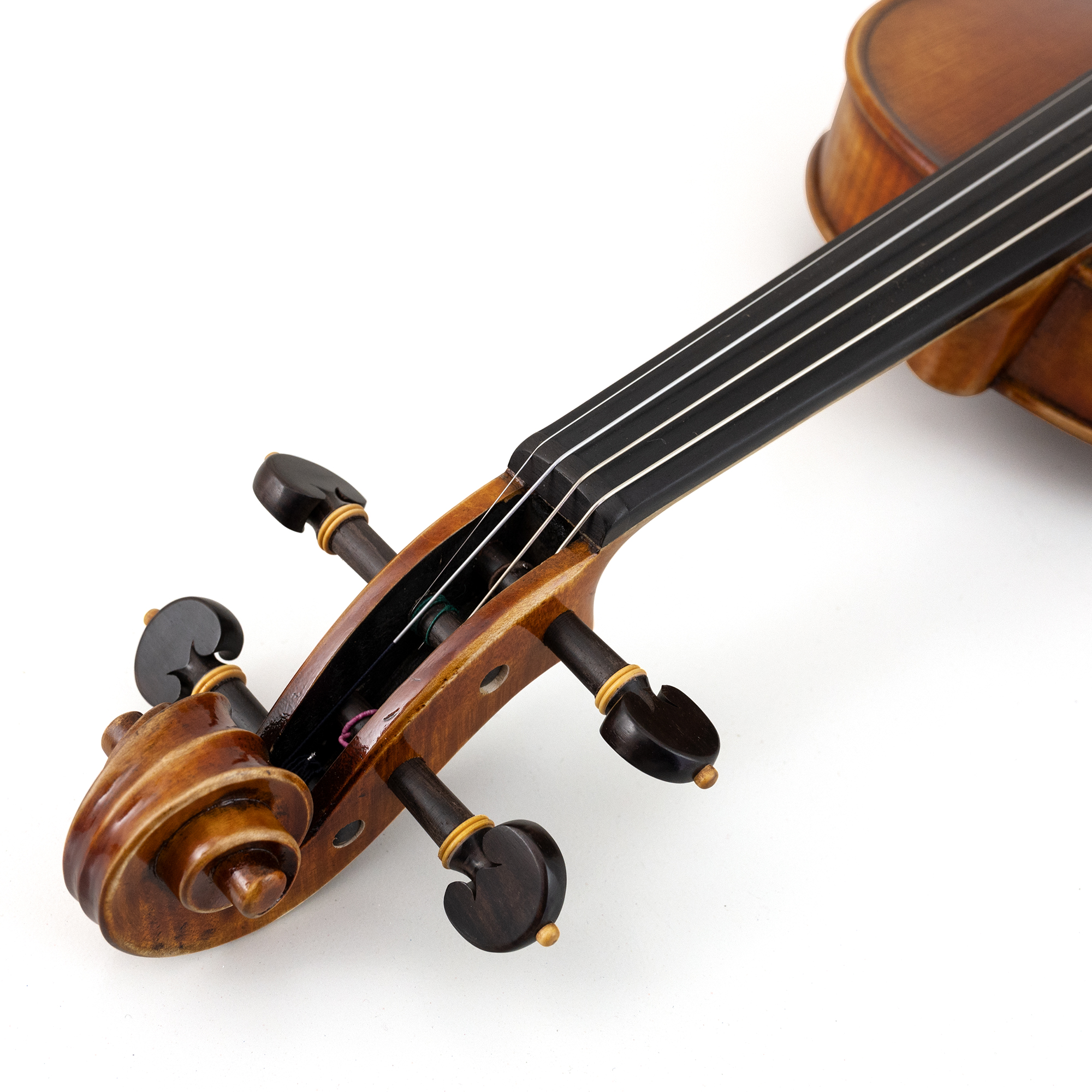 CLEARANCE Zubak Soloist Violin Outfit in action