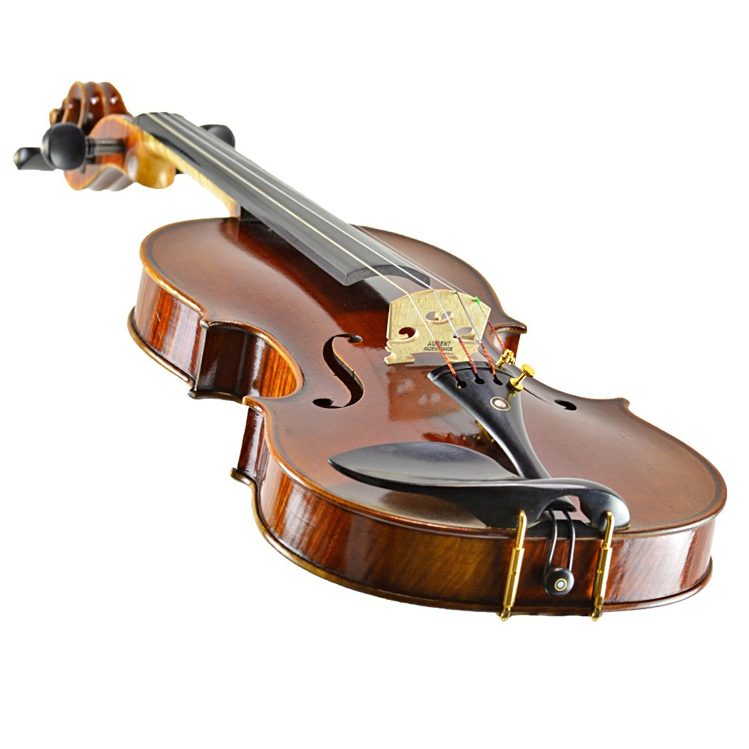 CLEARANCE Mikhail Vitacek Violin Outfit in action