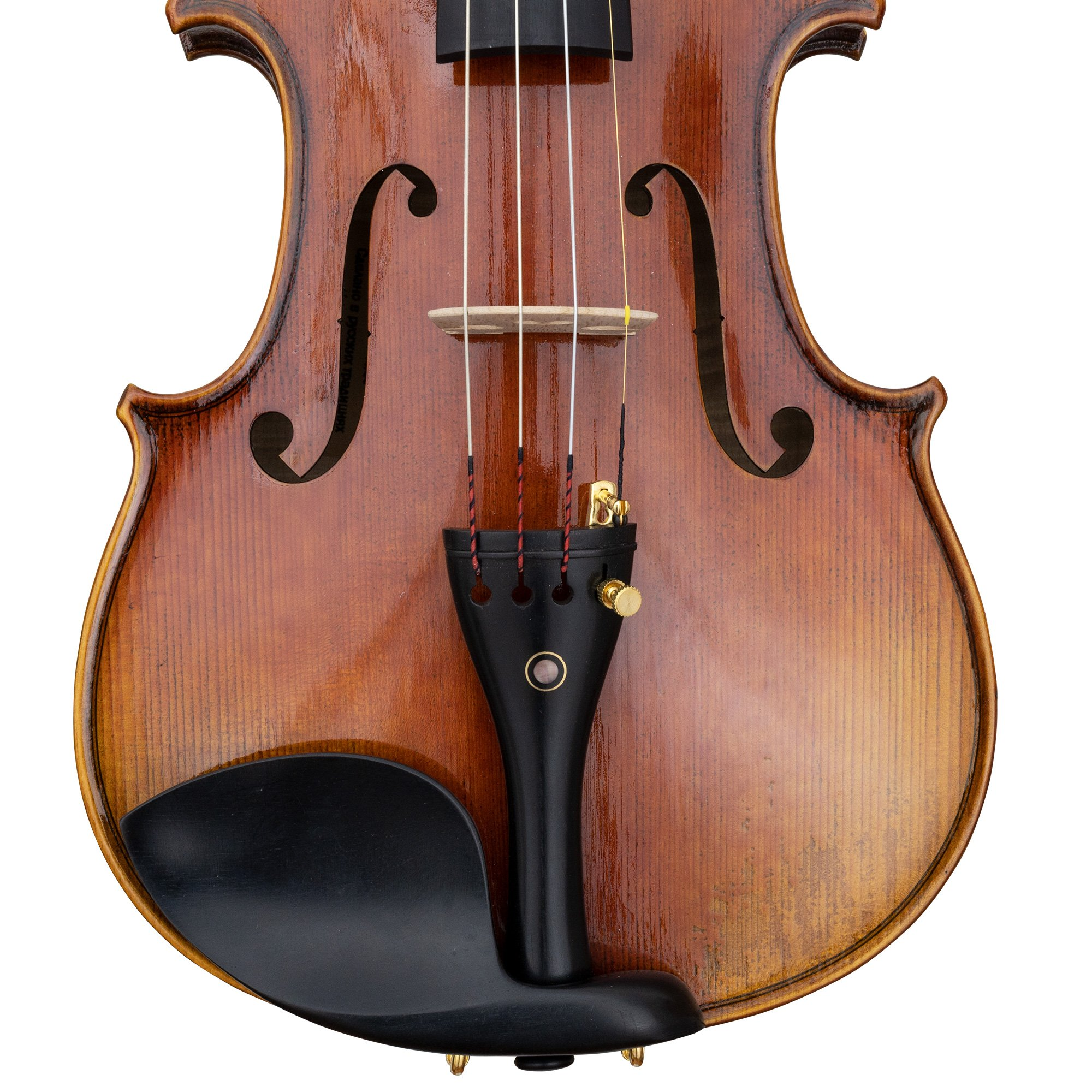 CLEARANCE Vitacek Master Series Violin Outfit in action